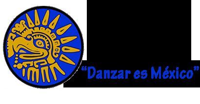 danzarmx.mx